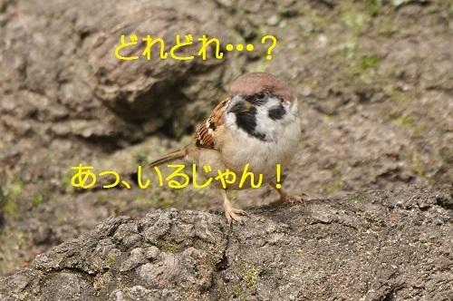 030_2016110620491790f.jpg
