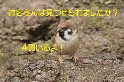 040_201611062049183b0.jpg