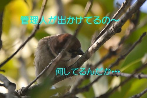 050_201610152230476bd.jpg