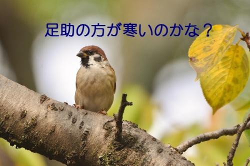 080_20161016202825416.jpg