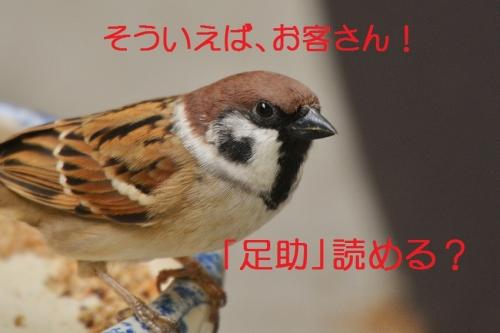090_2016101620282695c.jpg