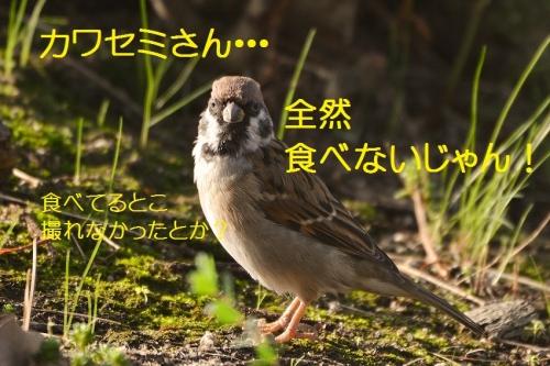 100_2016101819244878e.jpg