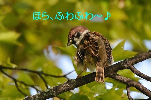 100_20161031193539950.jpg