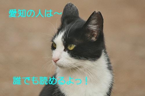 120_20161016203013cfa.jpg