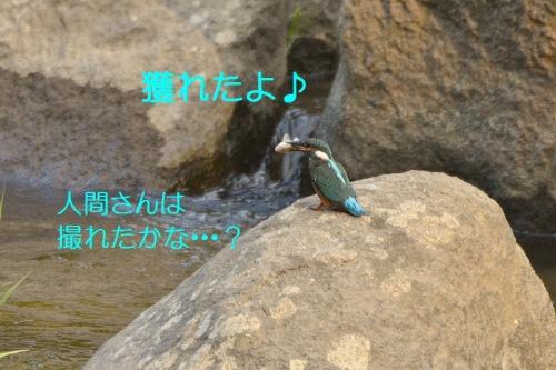 130_20161018192900603.jpg