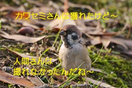 140_20161018192901a2f.jpg