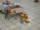 今日の画題の柿