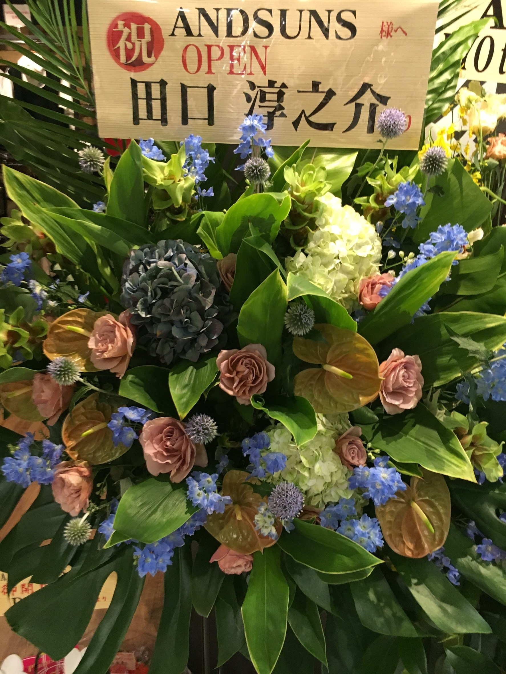 ANDSUNS花