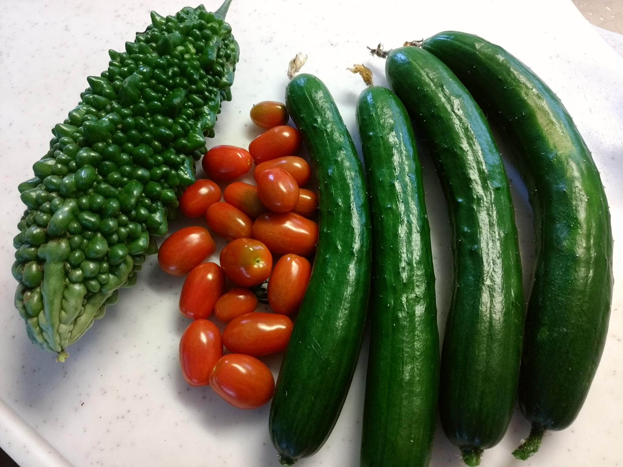 野菜20160718
