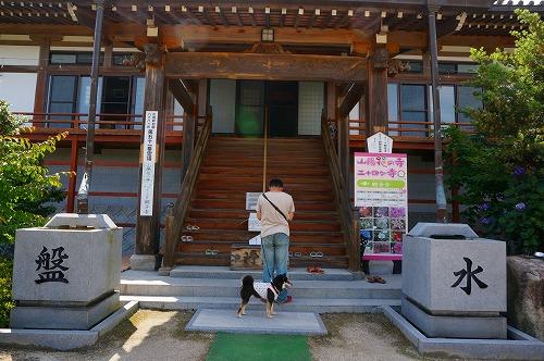 観音寺 (25)