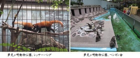 b0717-4 動物園