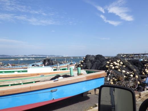 三浦港釣り (12)