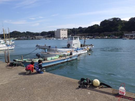 三浦港釣り (21)