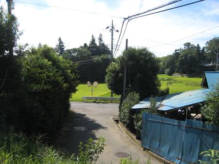 大角豆803-4