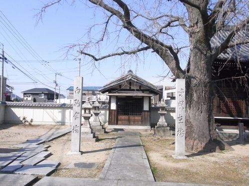 源平屋島合戦20