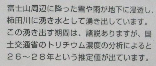 柿田川11