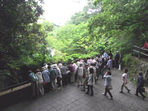 柿田川22