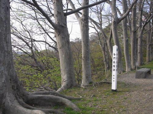 久保田城跡43