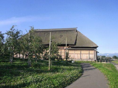 りんご公園9