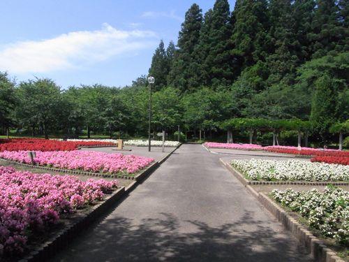 鶴の舞橋20