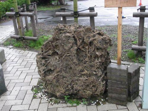 小坂鉱山34