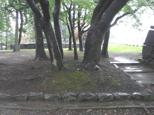 盛岡城跡9