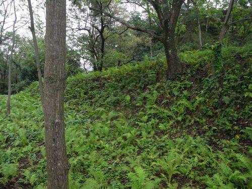 九戸城跡5