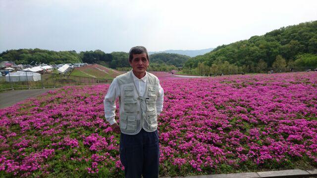 芝桜公園にて山本さん