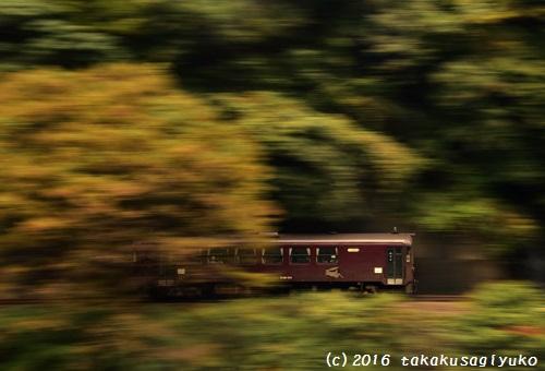 DSC_1468c1.jpg