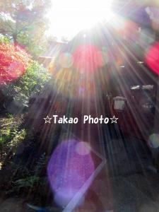 2015_1229_123202-IMG_7198のコピー