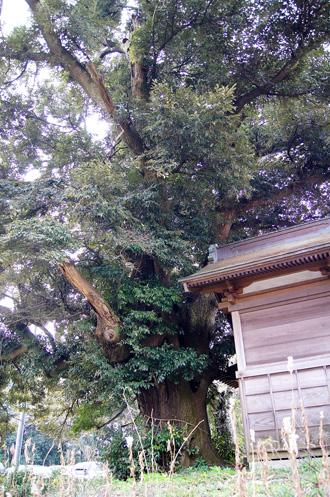 160323鏑木浅間神社③jpg