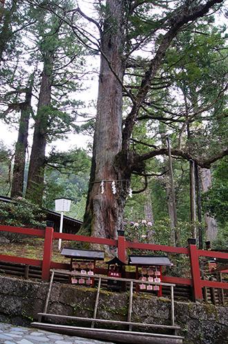 160427日光二荒山神社①