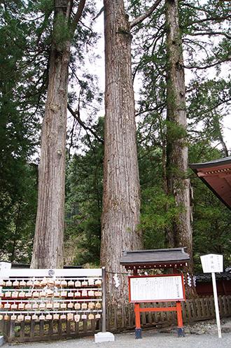 160427日光二荒山神社⑦