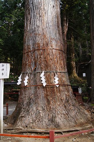 160427日光二荒山神社⑩