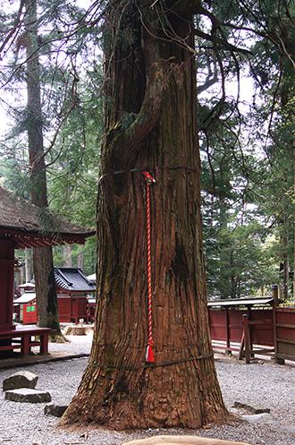160427日光二荒山神社⑫