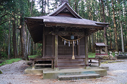 160416佐野市丸嶽山神社欅⑥