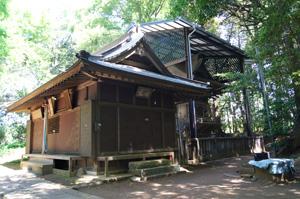160508佐倉市鷲神社ケヤキ⑥