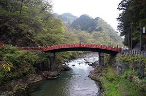 160427栃木県日光太郎杉④