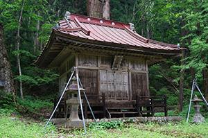 160525北野神社大杉⑧jpg