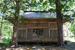 160603鹿島神社のトチ⑥