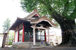 160612茨城県 下妻神社の大
