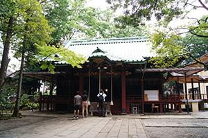 160625港区氷川神社イチョウ