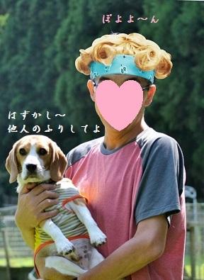 ぽよよん (1)