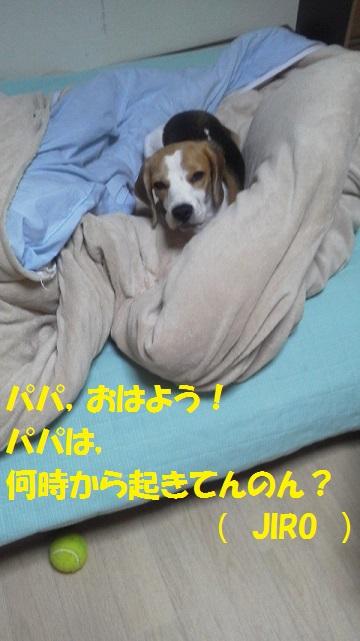 2016110104420000.jpg