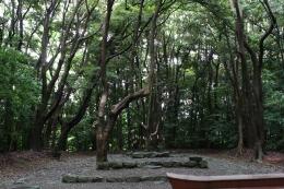 160710_09祭殿