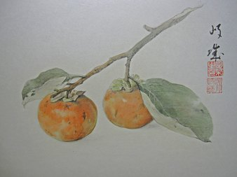 1as柿-1