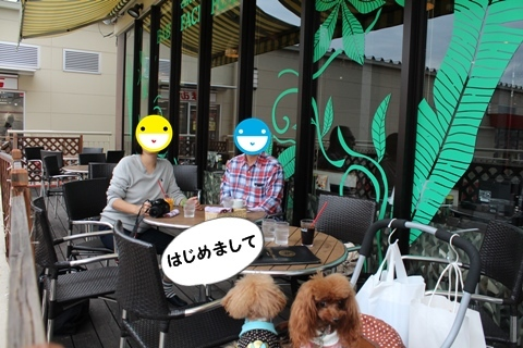IMG_6050.jpg