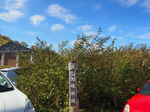 20161016・奥只見尾瀬1-08・枝折峠