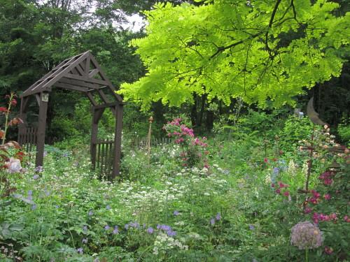 山の庭0001_1