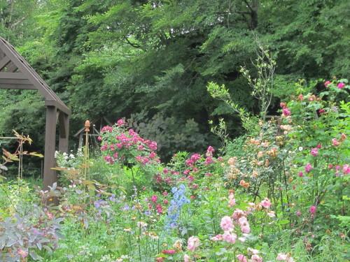 山の庭0001_4